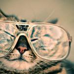 【保存版】大手メガネチェーン店7つを徹底比較!眼鏡のお店選びに困ったら